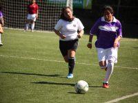 Copa Falabella 2017